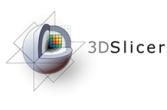 3DSlicerLogo-H-Color-218x144